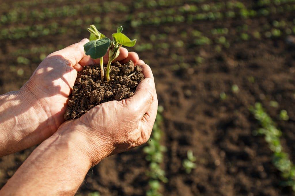 Governo lança Programa de Regularização Tributária Rural 2